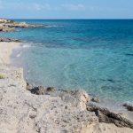 profumi mediterranei